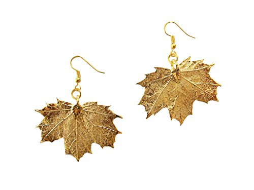 Sugar Maple Leaf - Medium 24k Gold Dipped REAL Sugar Maple Leaf, Gold Plated Leaf French Wire Dangle Earrings, Made in USA