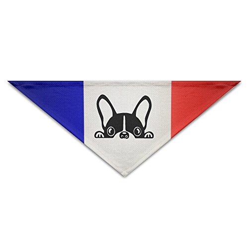 french bulldog bandana - 3