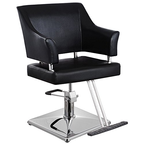 CAMERON Salon Barber Beauty Equipment European Styling Chair - SC-14BLK ()