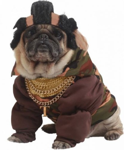 Pity The Fool Pet Pet Costume - Medium - Pity The Fool Pet Costume
