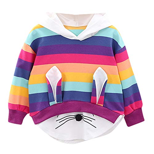 ANJUNIE Kids Baby Girls Striped Rainbow Pullover Cartoon Pattern Hooded Sweatshirt Fashion Tops(Multicolor,90)