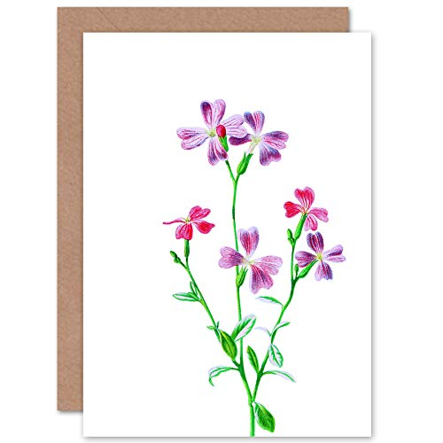 Virginian Stock - Vintage Bright Botanicals Virginian Stock Greetings Card
