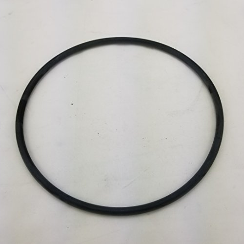 Pentair Aquatic Systems U9-369 Tank Flange O-Ring Replacement