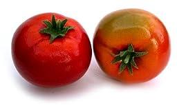 Artificial Fake Tomato Box of 12