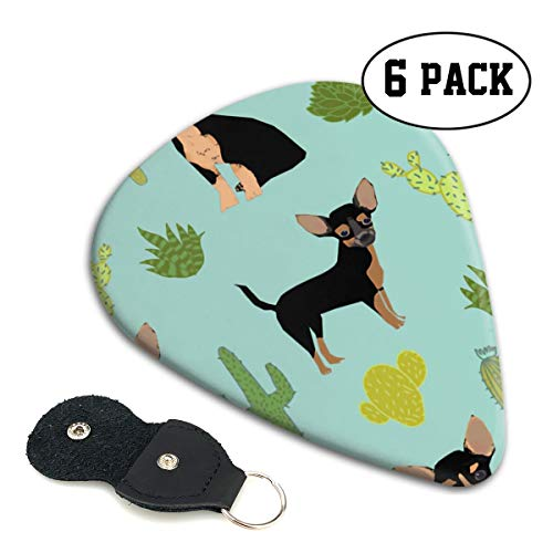 Chihuahua Succulent Cactus Fabric Small Medium Large 0.46 0.71 0.96mm Mini Flex Assortment Celluloid Top Classic 351 Rock Electric Acoustic Guitar Pick Accessories Variety Pack ()