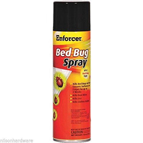 3-pack-enforcer-14-oz-bedbug-tick-flea-lice-cockroach-killer-spray-ebbk14