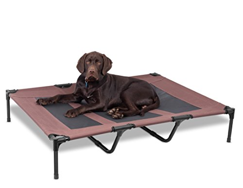 Internet's Best Dog Cot   48 x 36   Elevated Dog Bed   Cool Breathable Mesh   Indoor or Outdoor Use   Large   Brown