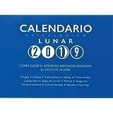 Calendario de las Brujas 2019 (AGENDAS): Amazon.es ...