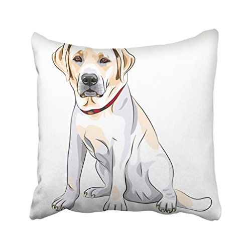 (Emvency 18X18 Inch Throw Pillow Cover Polyester Black Lab Portrait Of Close Up Serious Yellow Dog Breed Labrador Retriever Sits White Big Cushion Decorative Pillowcase Square Two Side Print For)