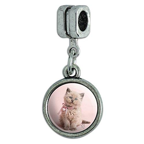 (GRAPHICS & MORE Miradoll Ragdoll Cat Kitten Pink Ribbon Bow Italian European Style Bracelet Charm Bead)