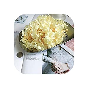20G Preserved Flowers Hydrangea,Dry Natural Fresh Forever Hydrangea with Small Leaves,Eternelle Rose,01 17