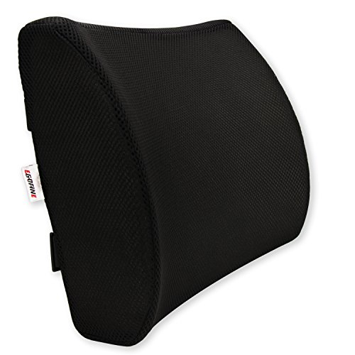 Egofine Memory Foam Lumbar Support Pillow Back Support Cushion With 3D Soft Firm Balanced Mesh Cover For Office/Computer Chair,Car (Mesh Memory)