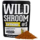 Cordyceps Mushroom Extract Powder 10:1 by Wild Foods | Water Extracted Adaptogenic Nootropic Herb for Immune Function and Focus (4 Ounce)