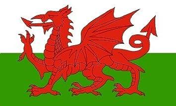 Image result for welsh dragon