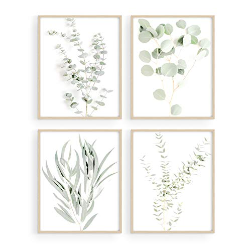 Haus and Hues Botanical Plant Wall Art Prints – Set of 4 Plant Wall Decor Prints Floral Kitchen Flower Leaves Wall Art…