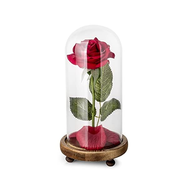 Carlsbe Beauty and The Beast Rose,for Mother's Day Holiday Party Wedding Anniversary Birthday Home Decor,Red Silk Rose and Led Light with Fallen Petals in Glass Dome on Wooden Base