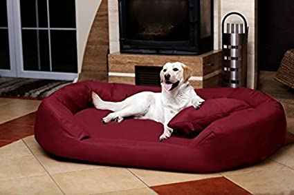 tierlando® SV6-04ortopédica cama para perro SAMMY VISCO ROBUSTO Gr. Xxxl 170cm color
