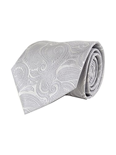 Men's Silver Paisley 100% Microfiber Poly Woven Wedding Neck Tie