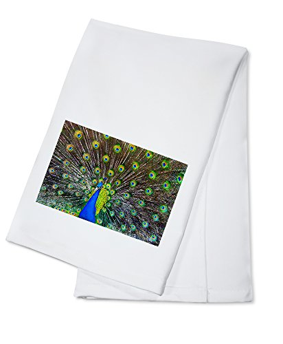 Peacock (100% Cotton Kitchen Towel)
