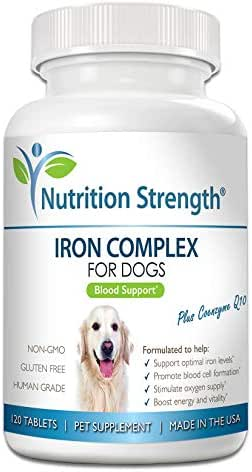 Nutrition Strength Iron for Dogs to Support Blood Health, Promote Blood Cell Formation & Oxygen Supply, Iron Supplement for Anemic Dogs with Vitamin C, Folate & Vitamin B12, 120 Chewable Tablets