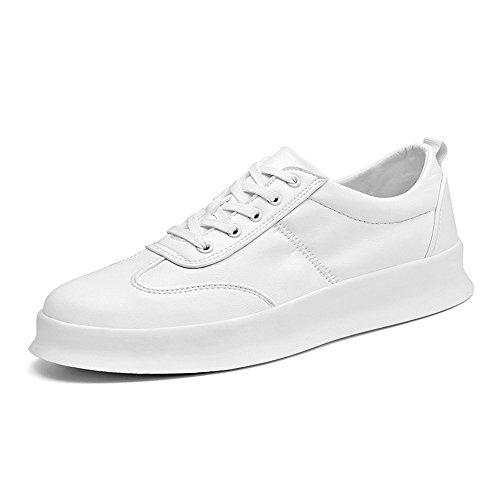 Men's Shoes Feifei Leisure Fashion Thick Bottom Breathable Plate Shoes 3 Colors(Size Multiple Choice) (Color : 01, Size : EU42/UK8.5/CN43)