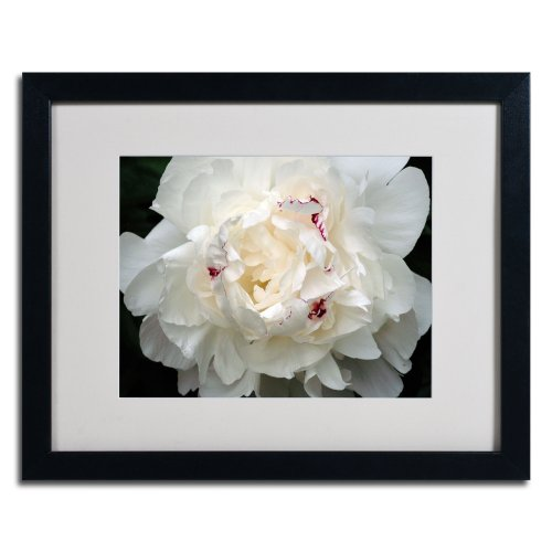 Kurt Shaffer Perfect Peony Framed Matted Canvas Art, 16 by 20-Inch, Black (Peony Framed)