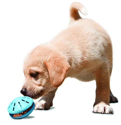 PetSafe Busy Buddy Twist 'n Treat Puppy Toy, Use with Food or ()