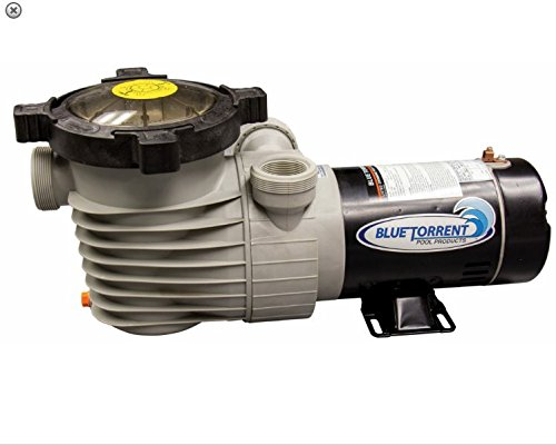 Priming Swimming Pool Pump - BT Energy Efficient 2 Speed Pump for Above-Ground Swimming Pool 1.5 HP-115V Self Priming