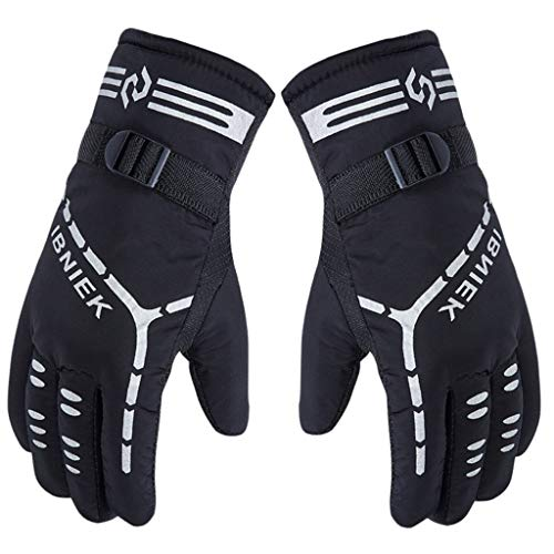 Livoty Winter Ski Gloves for Men,Thermal Thicken Gloves Windproof Waterproof Outdoor Motorcycle Riding Ski & Snowboard Gloves (Black)