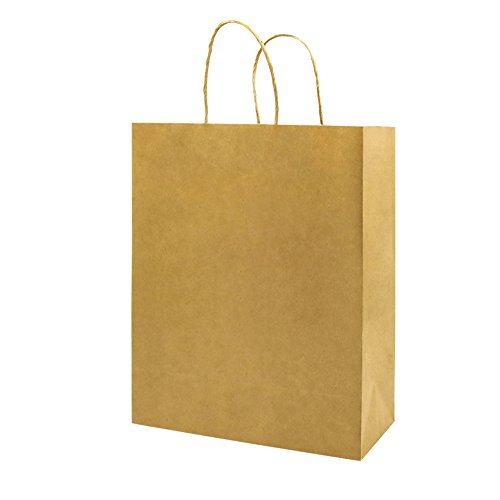 Thicker Paper 25 Count 10x5x13,Bagmad Large Kraft Paper Shopping Bags with Handles,Gift Natural Party Retail Craft Brown Bags,25Pcs