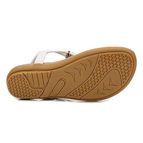 Sandales Chaussures Confort Sandale Dames JRenok Plage Mesdames Blanc Forme Plate Tongs Sandale Mousseux Thong Plate Été pour OYqxXwRxUn