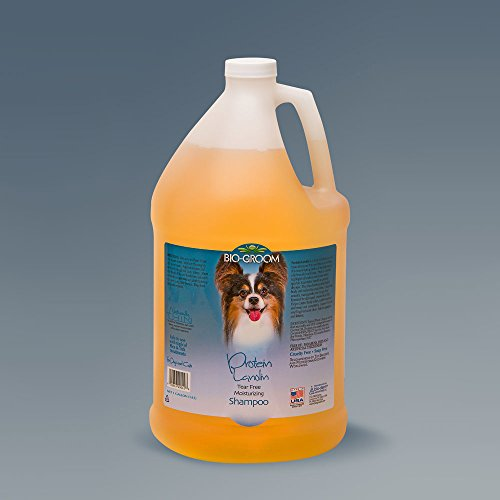 Bio-groom Protein Lanolin Pet Conditioning Shampoo, 1-Gallon by Bio-groom