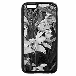 iPhone 6S Plus Case, iPhone 6 Plus Case (Black & White) - Flowers Contrast background 31