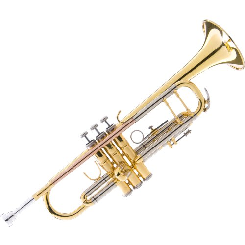 Cecilio 3Series TT-380GB Intermediate Double-Braced Bb Trumpet with Monel Valves + Case, Mouthpiece and Accessories by Cecilio