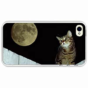 iPhone 4 4S Black Hardshell Case fence striped Transparent Desin Images Protector Back Cover