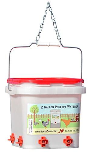 2 Gallon Chicken Waterer - Horizontal Nipple Setup (4 Nipple Corner)