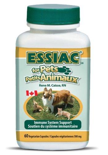 ESSIAC for Pets - Package of 6 bottles/60caps/per bottle