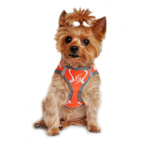 neon harness for dogs - 7