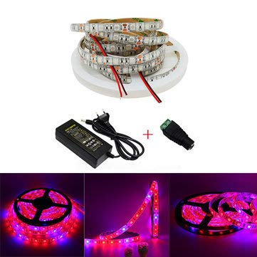 (3:1/4:1/5:1 Red:Blue 5050SMD 300LED Waterproof Hydroponic Plant Grow Strip DC12V - Indoor Lighting LED Grow Lights - (5 Red 1 Blue) - 1 x 5m Led Grow Light, 1 x)
