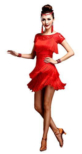 Honeystore Women's Latin Dress Lace Pattern Tiered Tassel Flapper Costume Dress Red S