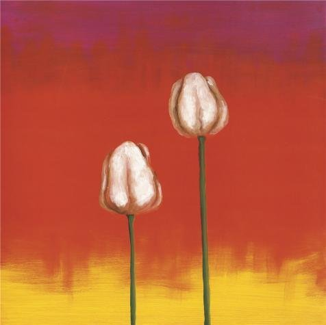 Oil Painting 'Two Tulips', 20 x 20 inch / 51 x 51 cm , on High Definition HD canvas prints is for Gifts And Basement, Garage And Nursery Decoration, printing - With Target Baby Sunglasses Strap