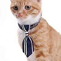 Legendog Cuello de Gato Creativo Corbata Campana Moda para ...