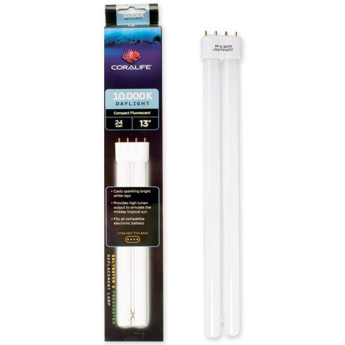 [Coralife 24 Watt 10000K Straight Pin Compact Fluorescent Lamp (Discontinued by Manufacturer)] (24w Life)