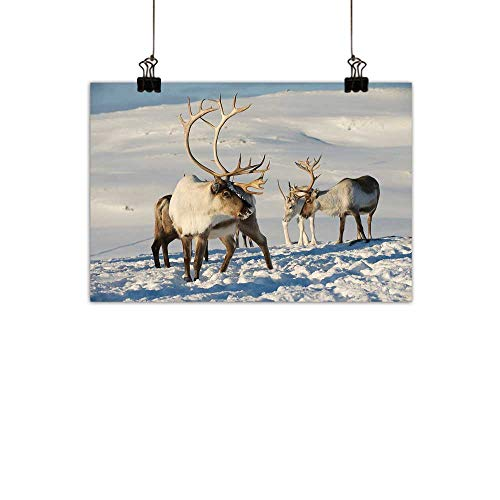 (duommhome Winter Modern Oil Paintings Reindeers in Natural Environment Tromso Northern Norway Caribou Antler Wildlife Canvas Wall Art 24