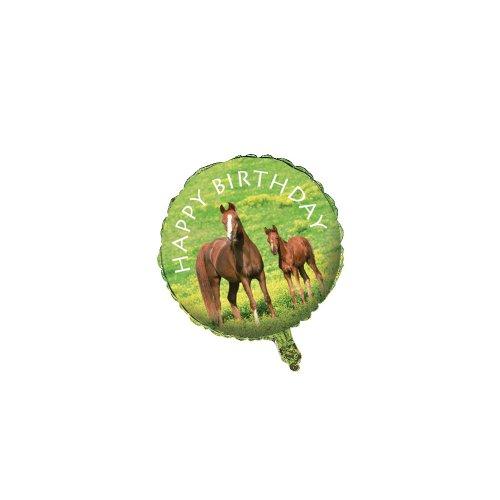 Creative Converting Wild Horses Metallic Balloon, 18-Inch