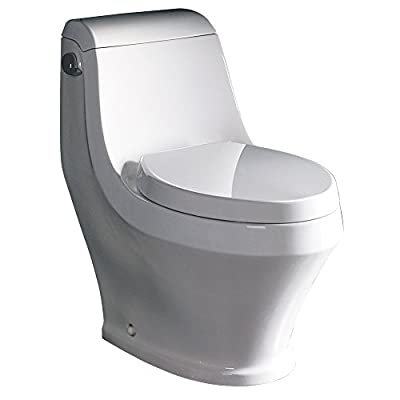 Fresca FTL2133 Volna Contemporary Toilet (1 Piece), Ceramic