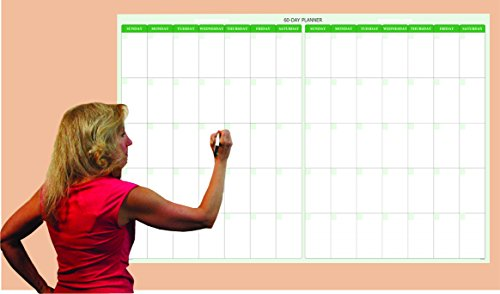Earth Green 60 Day / 2-Month Dry-erase Horizontal Wall Calendar 32 in X 48 in by PlanetSafe Planners & Calendars