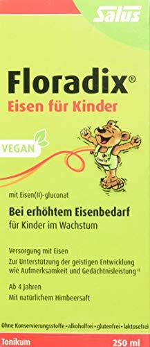 Floradix Eisen für Kinder, 250 ml