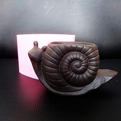Amazon.com: Macetero de caracol, la mejor calidad, moldes de ...