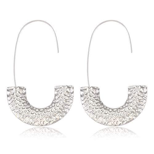 MOLOCH Acrylic Earrings Statement Tortoise Hoop Earrings Resin Wire Drop Dangle Earrings Fashion Jewelry for Women (F-Silver)
